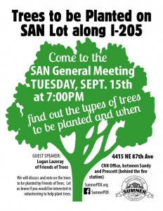 SAN-lot-tree-flyer-color